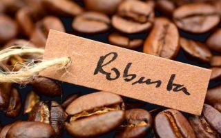 Кофе Робуста — терпкий вкус и аромат